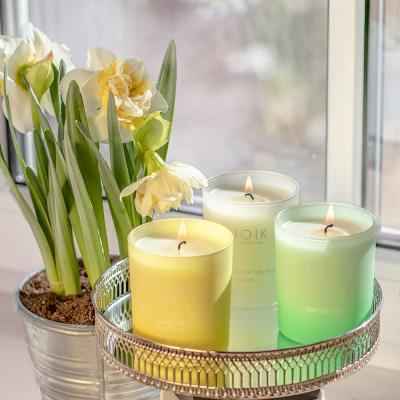 Kevadised küünlauudised: Narcissus poeticus